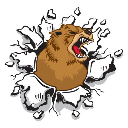 bursting: Bear bursting through Wall,Mascot,Sports.