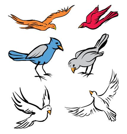다른 새 행동을하는 다양한 작은 새들 일러스트