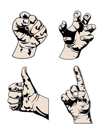 An Illustration of Various Hands in different poses
