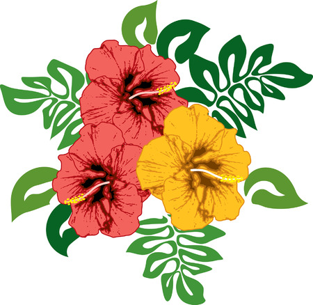 Hibiscus natural colors hawaiian foliage and flowers Vector