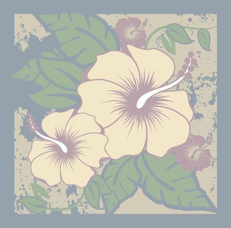 Hibiscus couleurs naturelles feuillage et de fleurs hawaïen Banque d'images - 35460049