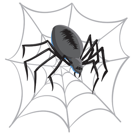 An Illustration of a Black spider and it's web.