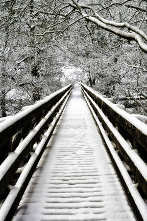 Snowcovered empty walkway and bare branched deciduous trees on a cold winter day at Nidd Gorge, United Kingdom Stock Photo