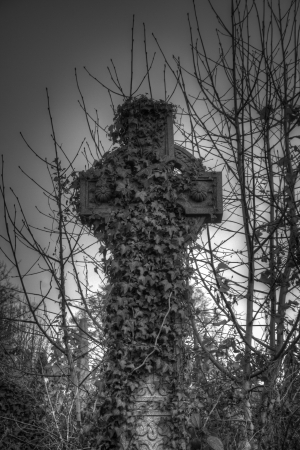 Black and white image of an ivy covered Celtic cross at Bradford cemetery, England with vignetting Stock Photo - 15769703