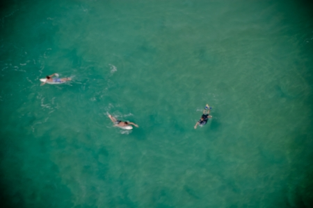 Overhead view of three surfers paddling their boards in the ocean as they wait for the next big wave to come in photo