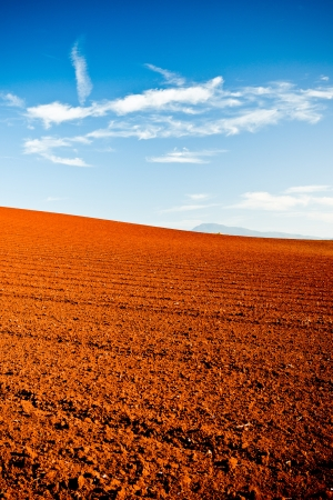 Ploughed red earth in late evening sun glowing richly in the golden light in a beautiful environmental landscape of agricultural land photo