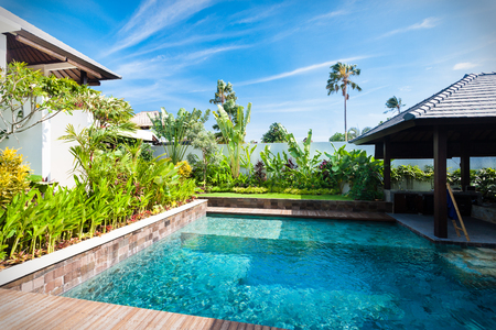 Modern blue water swimming pool with colorful garden including greens, plants and flowers around it under the clear blue sky