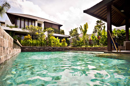 house with style: Traditional swimming pool with stone walls is covered with trees and plants in the garden of a house in the morning time
