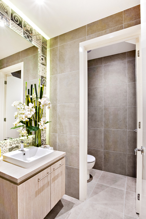 washroom: Modern washroom with fancy decoration items beside the mirror including green flowering plant with a sink and tap, there is a door open to the toilet
