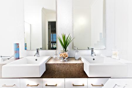 シンクとハーブと soap 反射ミラーに近く緑の植物の横にタップを含む洗面所のカウンター トップ
