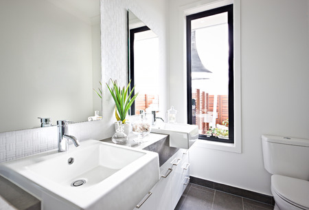 White washroom sink and mirror near a green plant illuminated with sunlight coming from the glass window panel beside the toilet bowl