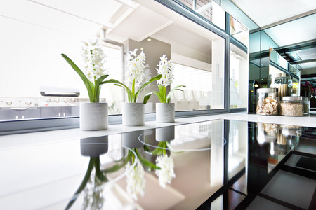現代ストーブはクローズ アップ ウィンドウおよび顕花植物の横に、黒いストーブは光沢があり反射見ることができる非常に密接に窓、キッチン成分 写真素材