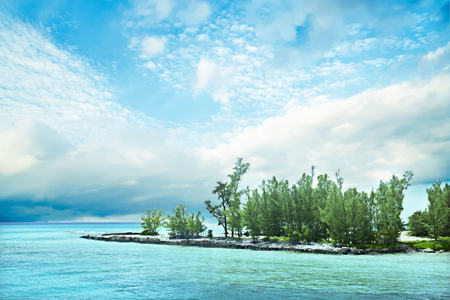 Green tree island in the middle of the ocean with light blue water under the white cloudy sky