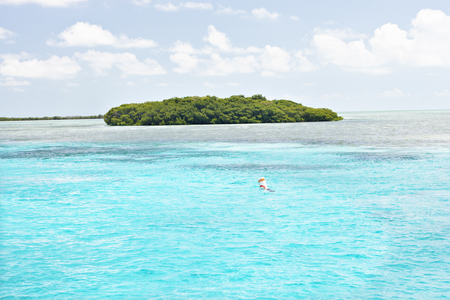 Colorful island with trees on sea, weather is clear, daytime scene with sunlight, sea area is shinning, perfect lighting of photo. Stock Photo