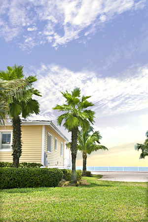 palm tree garden including a green lawn with the grass wall near the sea and blue sky view, there is a house near the coast under the blue sky and clouds