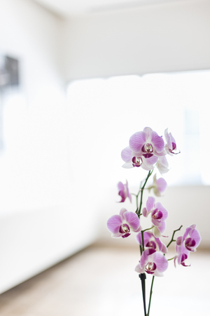 A marvelous floral design