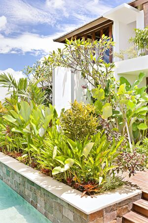 Closeup view of a green plant garden in luxury house with blue sky Banque d'images - 125053732
