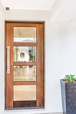 Wooden door fixed to the white wall in a modern house with flower pot including green plant in it, walls are colorful, very clean area with perfect lightning.