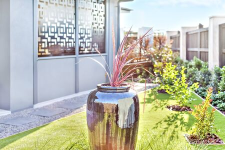 Modern garden with a green lawn focusing the shiny vase in black color with a plant in it, the background is blurred, green grass on ground, very clean place. Фото со стока