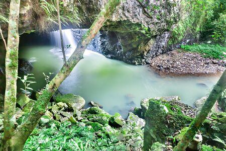 Small waterfall in a stone cave flow and there are mossy rocks and trees outside in the jungle