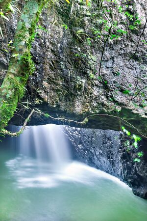 Small waterfall flows and make a green water river under a huge rock with moss and grass near to a tree