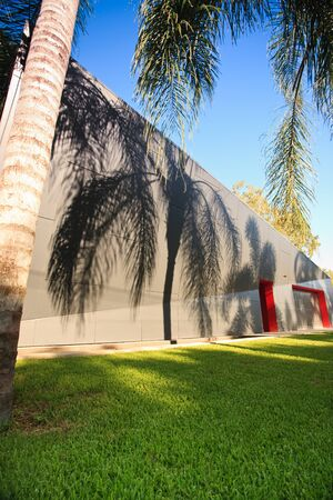 A contemporary building exterior with grass and palm trees Stock fotó