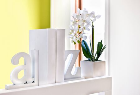 House interior decoration using 3d English letters and a white flowering plant, all letters and the supporter of the decor is white and made by wooden or cement, background is blurred a little and pro