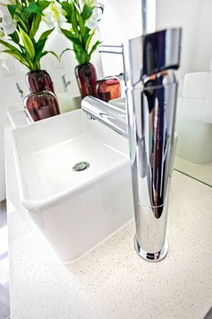 Neat basin with a stylish tap and a decorative plant in the background