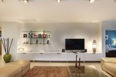 Books and television in living room, comfortable furnitures and designs, walls are white color, chairs arround the tables, inside rooms of a apartment. 写真素材