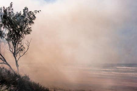 Australia bushfires in summer fire season