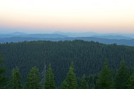 A mellow evening panoramic shot of the ridges in the Mt. Shasta Wilderness area in California.