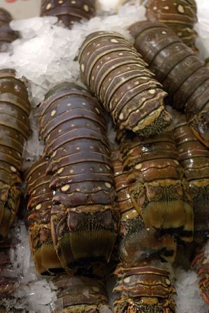 Lobster tails on display in Seattles seafood market.