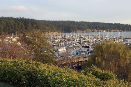 A view of the harbor in Friday Harbor, WA shortly after sunrise.