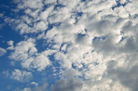 cumulus cloud: Cumulus nube