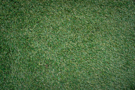 natural green manila grass texture background Stock Photo