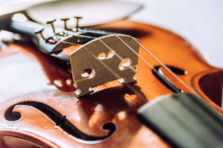 Violin parts. Bow first on white marble background. Selective focus. Stock Photo