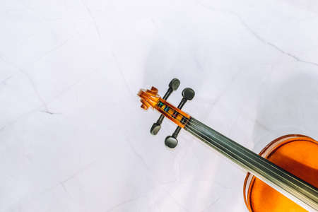 close-up of F's and violin bridge.Violin parts on a white marble background. Selective focus. Stock fotó