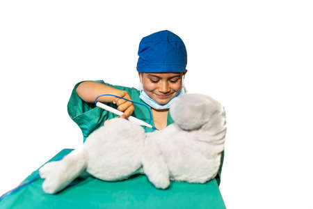 happy child disguised as a surgeon playing doctor operating on a teddy bear