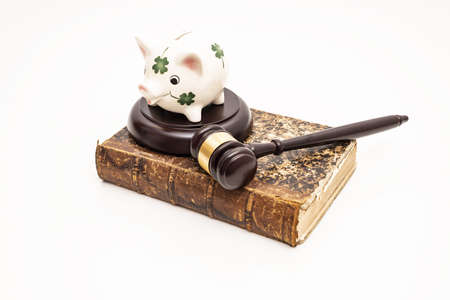 Piggy bank on judge's gavel. Savings concept with security.