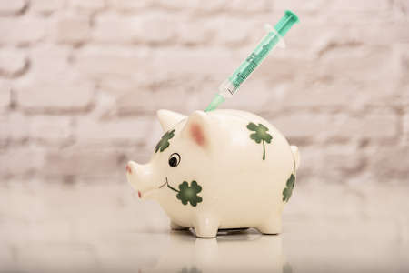piggy bank with syringa on the back on a white brick background out of focus