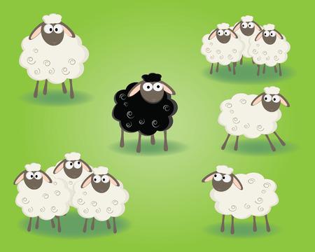 oveja negra: garbanzo negro de la familia