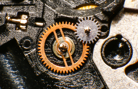 macro: Old watch mechanism, macro