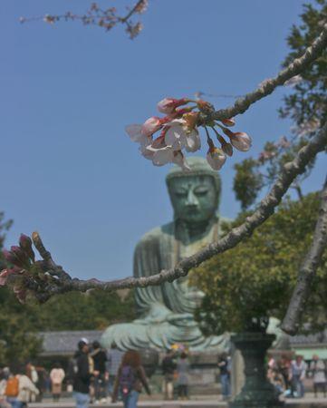kamakura: Kamakura