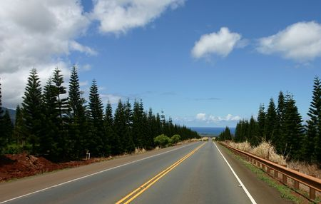 road to northshore photo