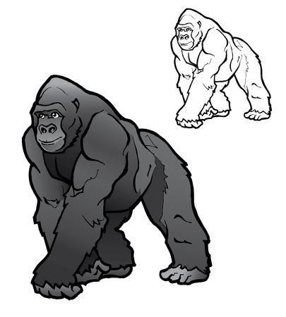 gorilla: Ilustraci�n de gorila de Silverback  Vectores