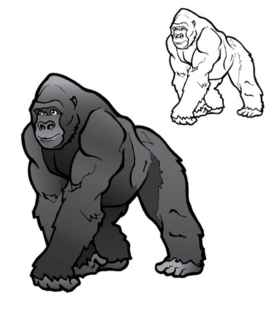 gorilla: Silverback Gorilla Illustration Illustration