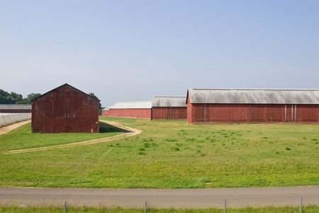 connecticut: Several Connecticut Tobacco Barns Stock Photo