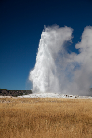 the faithful: Old Faithful