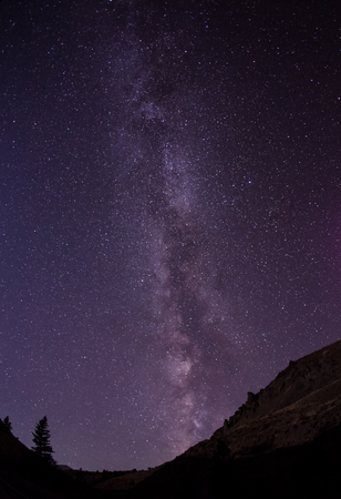 A clear night in Yellowstone with the Milky Way in the sky