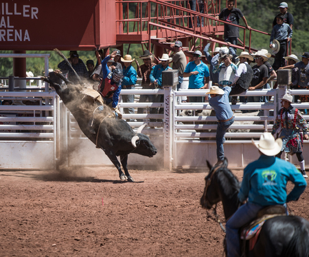 bucking bull: Professional Rodeo at the Mescalero Apache Ceremonial & Rodeo grounds, Mescalero, New Mexico, America - 3 Jul 2016
